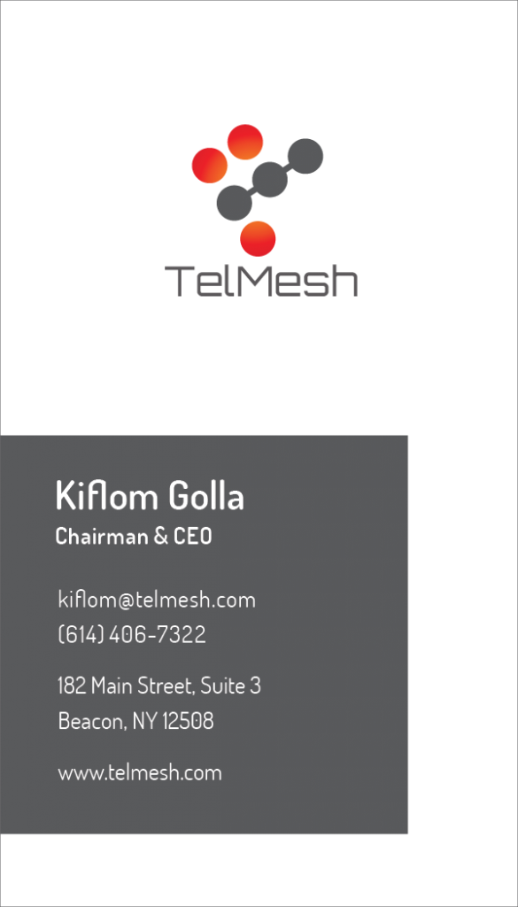 Telmesh business card-01